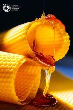 Miel dulces La Siberia Extremadura CEDER