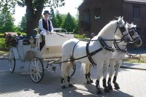 Hochzeitskutschen Mieten Fur Hannover Und Umland
