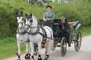 Hochzeitskutsche Kutschen Ogurek