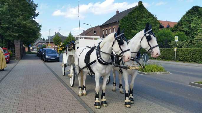 Hochzeit In Der Elfrather Muhle In Krefeld Hochzeit