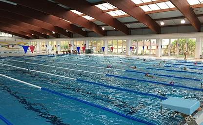 Cursos de natación 2018/2019