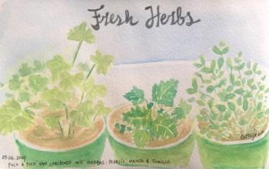 Fresh Herbs * Acuarela
