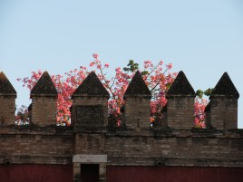 Muralla que rodea los Reales Alcázares