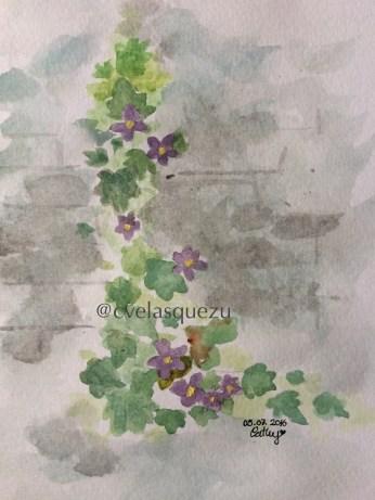 Flores creciendo en un muro