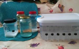 never ending plasma vials-basic 4