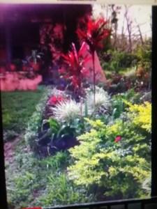 Salas garden smaller photo