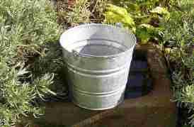 bucket featured