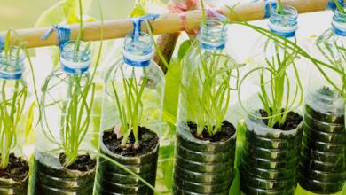 Foto de Embalagens plásticas também têm conceito sustentável