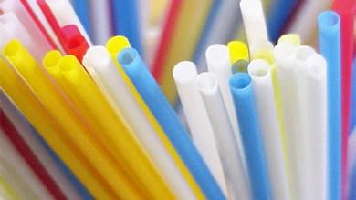 Foto de Uso de canudos plásticos é debatido com campanhas