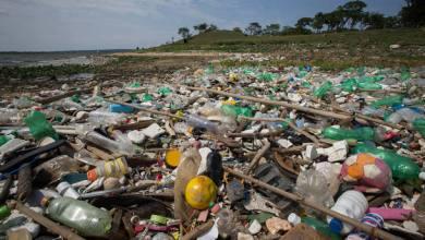 Foto de Somente 9% do plástico produzido pela humanidade foi reciclado