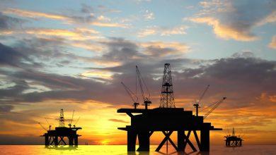 Foto de GranInvestimentos em parceria com a Royal IHC, se torna GranIHC Services