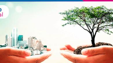 Foto de Sustentabilidade: coloque em prática