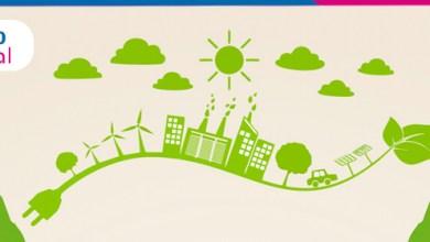 Foto de Canguru promove sustentabilidade e economia para Magnus com sacola reciclada