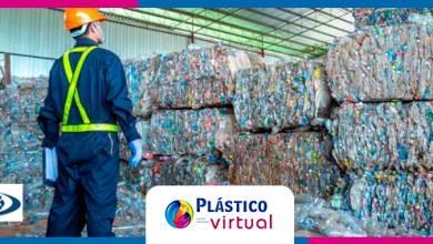 Foto de Mercado de reciclagem tem boa expectativa para 2021