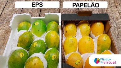Foto de Soluções em EPS proporciona vantagens competitivas para produtores de mamão, distribuidores e varejistas