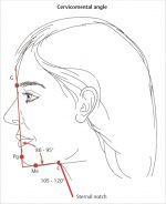 6 Principles of Facial Aesthetics