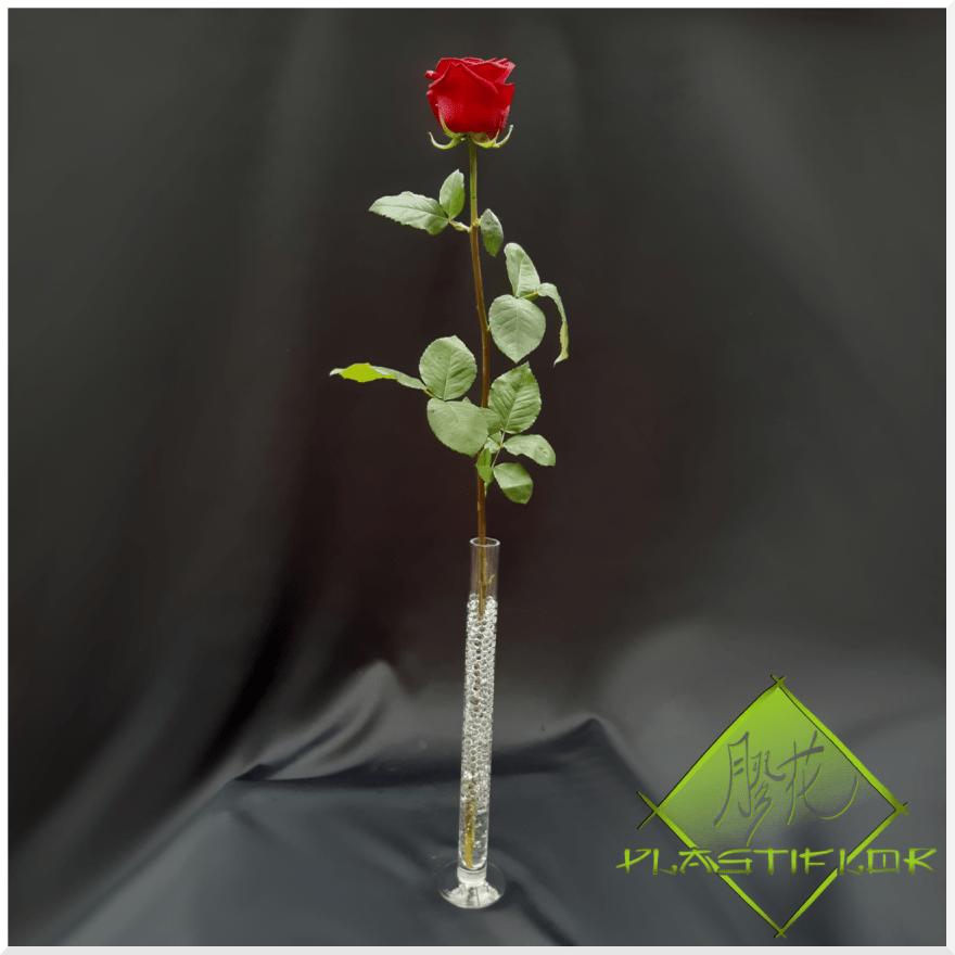 Rose rouge ©Plastiflor