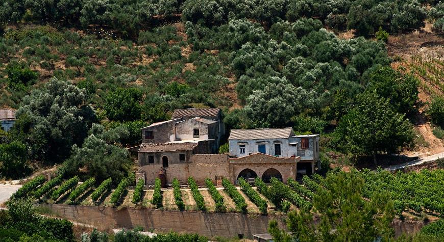 Anoskeli Winery