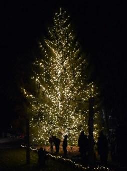 Christmas.Tree.Lighting.Cashiers (26)