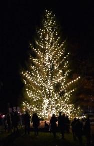 Christmas.Tree.Lighting.Cashiers (28)