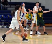 Highlands.Blue.Ridge.basketball.MS (13)