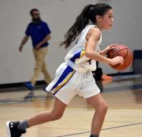 Highlands.Blue.Ridge.basketball.MS (17)
