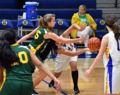Highlands.Blue.Ridge.basketball.MS (43)