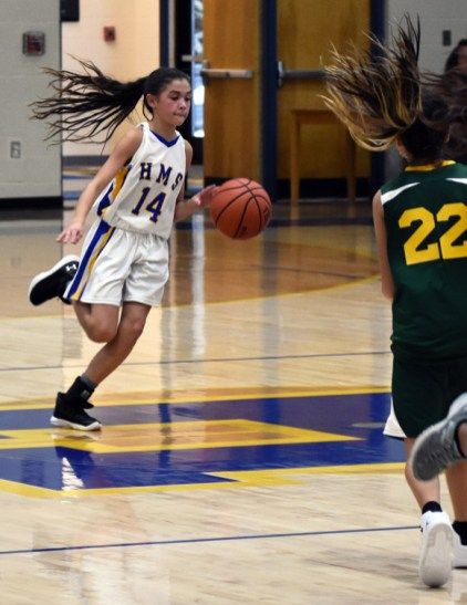 Highlands.Blue.Ridge.basketball.MS (68)