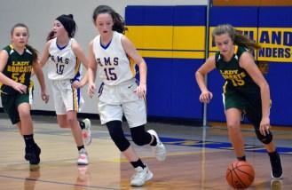 Highlands.Blue.Ridge.basketball.MS (9)