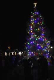 Highlands.Christmas.Tree.Lighting (48)