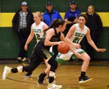 BR.Hayesville.basketball.V (7)