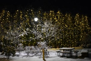 Snow.Highlands.12.9 (12)