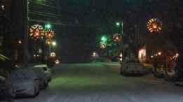 Snow.Highlands.12.9 (22)