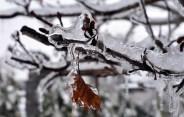 Snow.Highlands.12.9 (30)