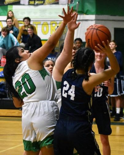 Blue.Ridge.Asheville.basketball.V.girls (10)