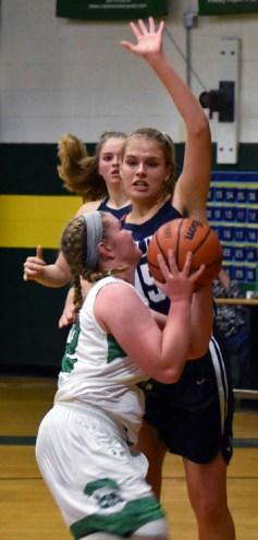 Blue.Ridge.Asheville.basketball.V.girls (15)