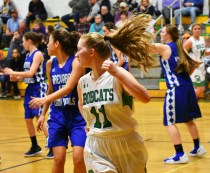 Blue.Ridge.Brevard.basketball.V.girls (3)