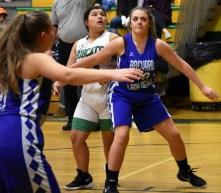 Blue.Ridge.Brevard.basketball.V.girls (7)