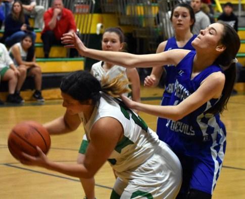 Blue.Ridge.Brevard.basketball.V.girls (9)