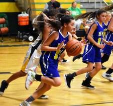 Blue.Ridge.Highlands.basketball.MS (17)