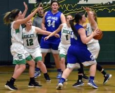 Blue.Ridge.Hiwassee.basketball.V.girls (8)