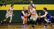 Blue.Ridge.Hiwassee.basketball.V.girls.LSMC (19)