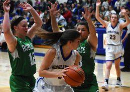 Highlands.Blue.Ridge.basketball.girls.V.snr.night (9)