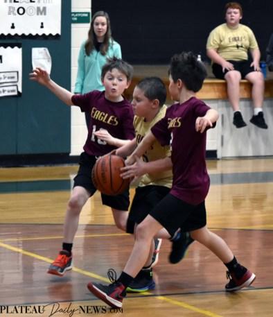 Rec.basketball (3)