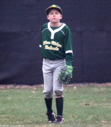 Blue.Ridge.Fairview.baseball.MS (17)