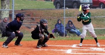 Blue.Ridge.Fairview.baseball.MS (2)
