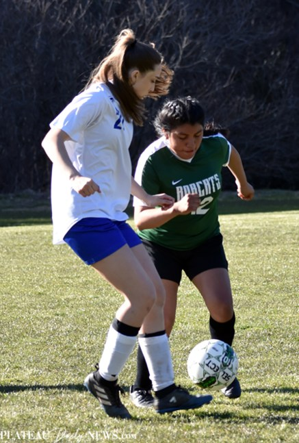 Blue.Ridge.Highlands.Soccer.V (8)