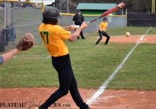 Blue.Ridge.Hiwassee.Baseball.V (26)