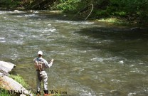 Fly.Fishing.Nantahala (5)