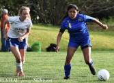 Highlands.Elkin.Soccer.V (29)